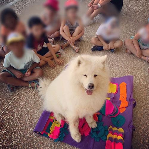 ateliers éducatifs et pédagogiques peccram